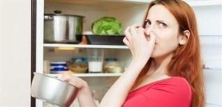 Cách khử mùi hôi cho tủ lạnh cực hiệu quả