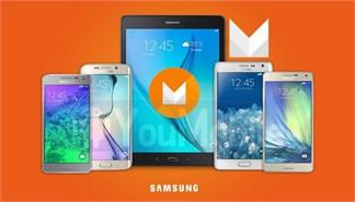 Nhiều smartphone Samsung bắt đầu được dùng thử Android 6.0