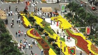 Nhiều đường hoa ở TP Hồ Chí Minh được nâng cấp Wi-Fi miễn phí
