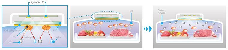 Sử dụng chất quang xúc tác và ánh sáng từ đèn Led tạo môi trường lưu trữ thực phẩm tối ưu.