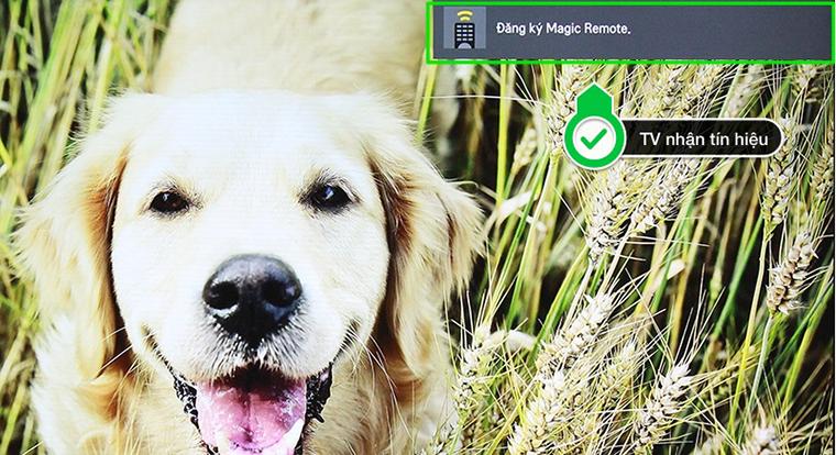 Magic Remote LG 2016 - Tivi đang nhận tín hiệu kết nối từ remote